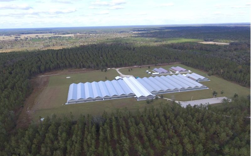 Liberty Health Sciences announces definitive agreement for the acquisition of 387-acres of land in Gainesville, Florida