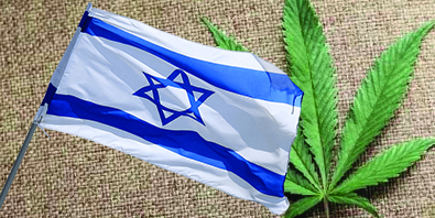 """iCAN: Israel Cannabis CEO: """"Cannabis to become as important to Israel's economy as high-tech"""""""