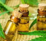 Cannabinoid Oil