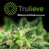 Trulieve Announces Filing of Resale Registration Statement on Form S-1